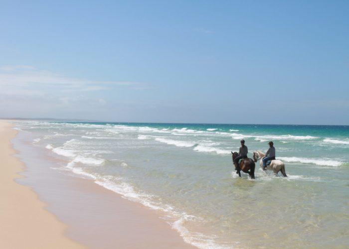 Equitation Serra Da Arrabida